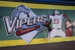 Bij het 'viper' logo