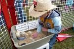 Dieren van de kinderboerderij