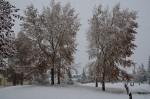 Een lekkere sneeuwbui