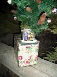 De kerstboom cache, met muziekdoosje!