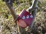 Een valentijns cache, met muziek